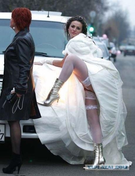 Хороша невестушка...