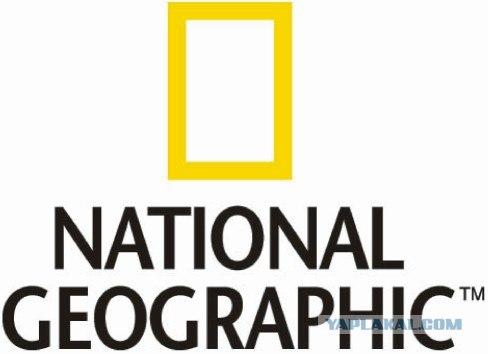 Лучшие фотографии от National Geographic за ноябрь