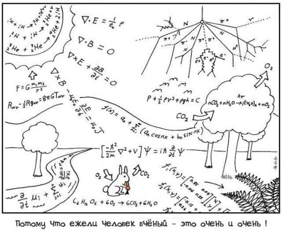 прикольные картинки про физику: