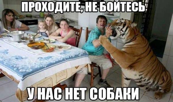 http://s00.yaplakal.com/pics/pics_original/7/0/4/4929407.jpg