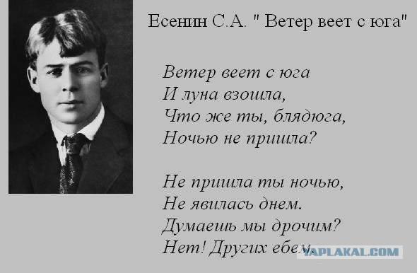 Сергей Есенин стихи о природе