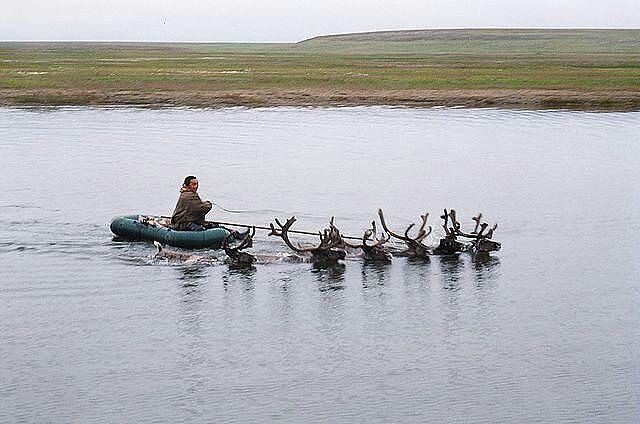 здесь живут оленеводы и рыбачат рыбаки