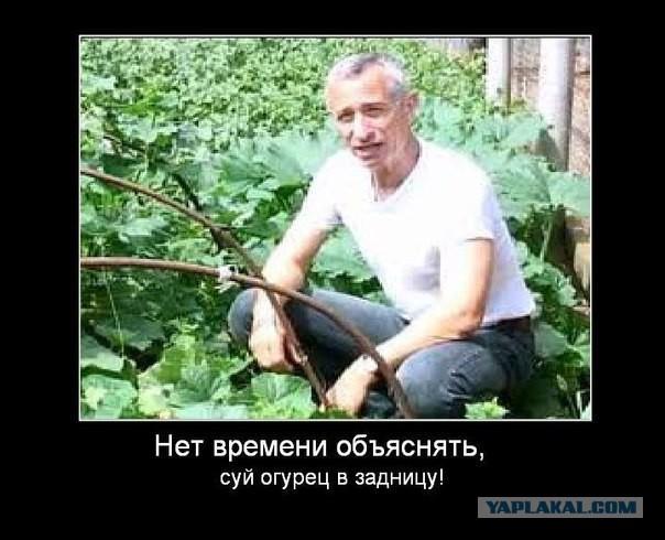 zasunula-polnostyu-v-pizdu-bolshoy-fallos