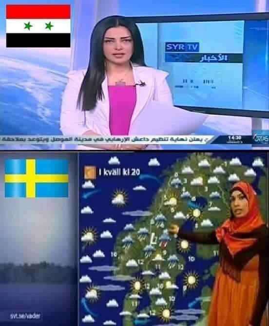 А теперь о погоде.Если в Сирии не получается жить по шариату, то можно попробовать в Швеции