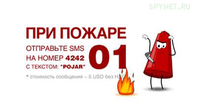 post-3-1147382968.jpg