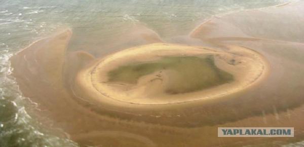 В Северном Ледовитом океане открыт новый остров