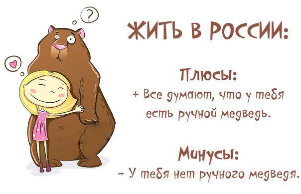 Плюсы и минусы жизни в России