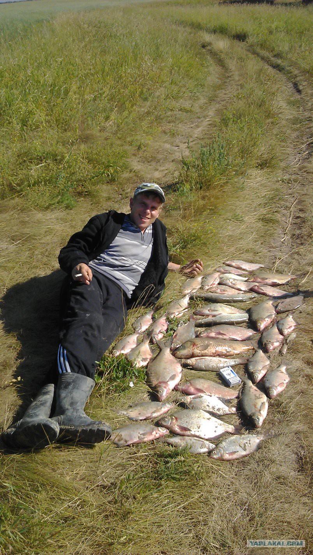 снасть для рыбалки на волге кострома