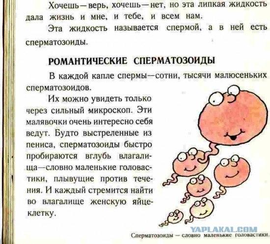 Видео откуда берется сперма сайт!