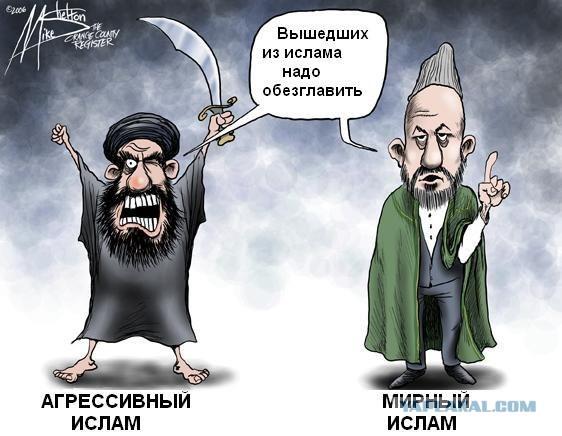 Госдума с подачи Чечни запретит, называть террористов исламскими