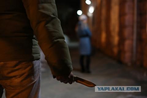 Члены Общественной палаты предложили исключить из УК РФ превышение допустимой самообороны