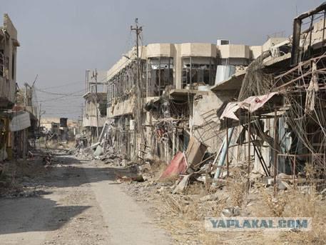 США нанесли удар по школе для девочек на юге Мосула