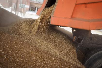 Россия задумалась подарить Северной Корее тысячи тонн пшеницы