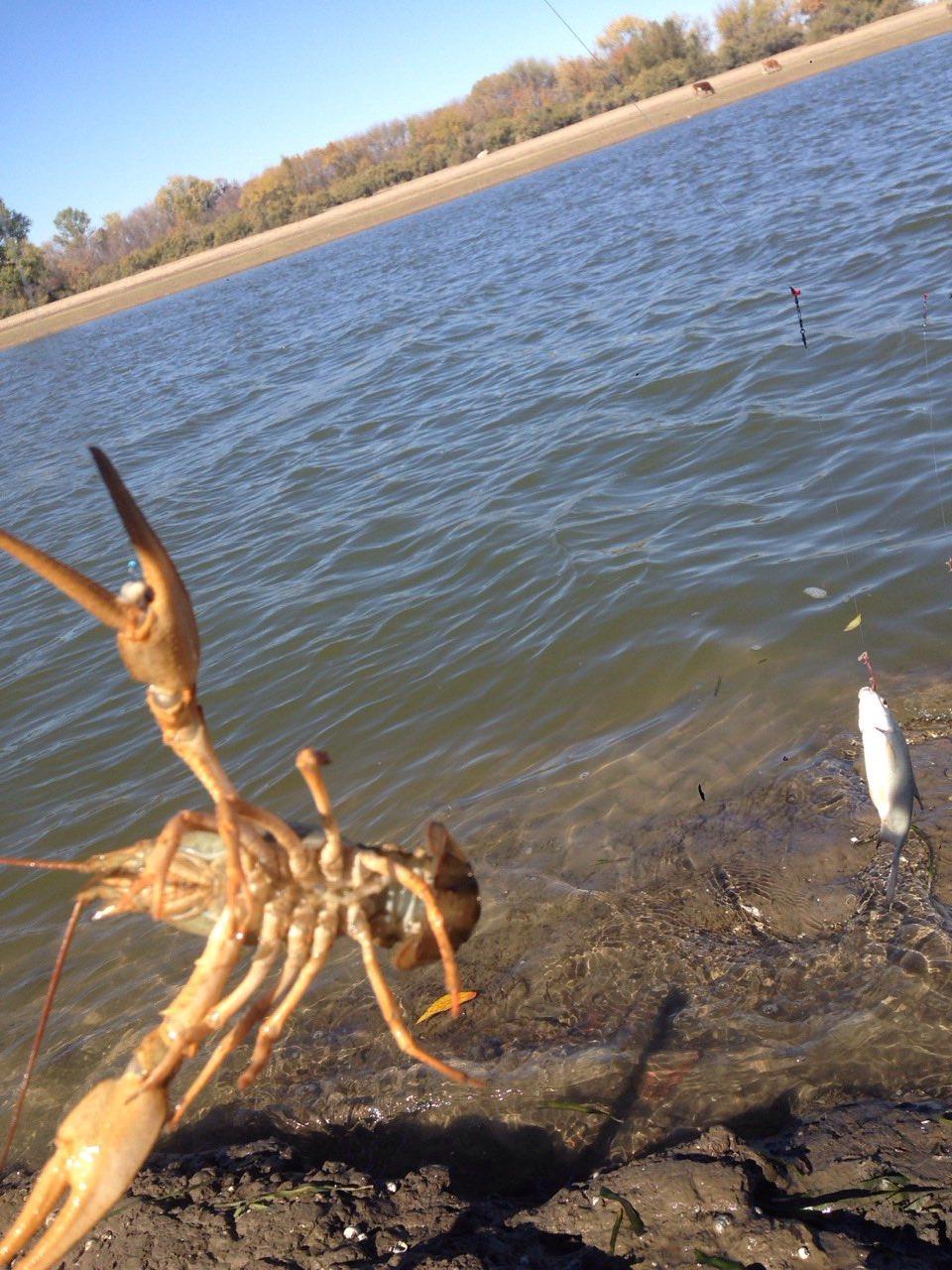 рыбалка оленевка пензенская обл