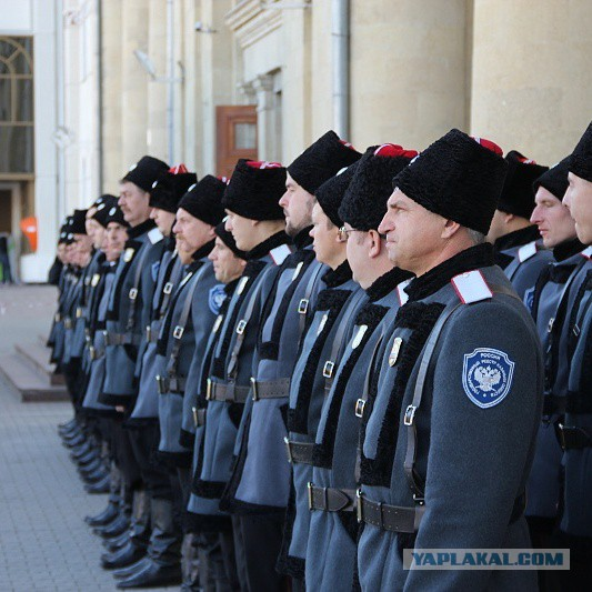 Казаки Волгограда спешат на помощь Севастополю!