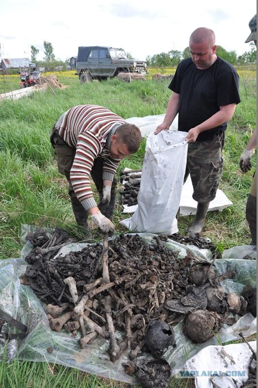Нашли останки 27 бойцов Красной Армии