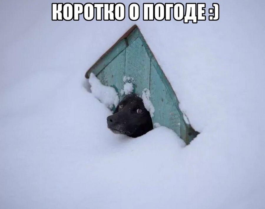 http://s00.yaplakal.com/pics/pics_original/7/5/4/11113457.jpg