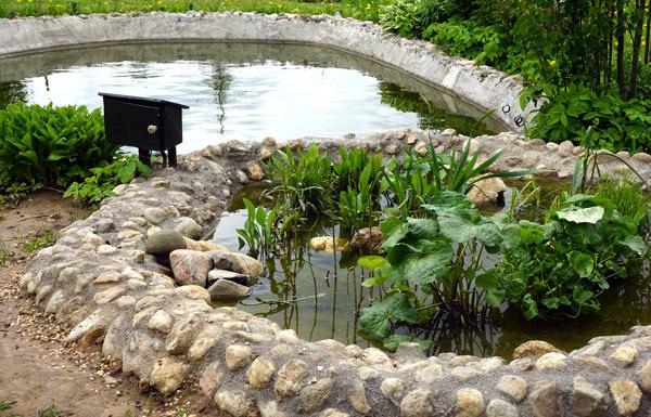 Как построить на даче искусственное болото
