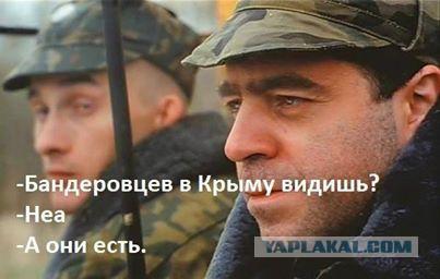 В оккупированном Крыму смогут принудительно изымать любую частную собственность - Цензор.НЕТ 2098