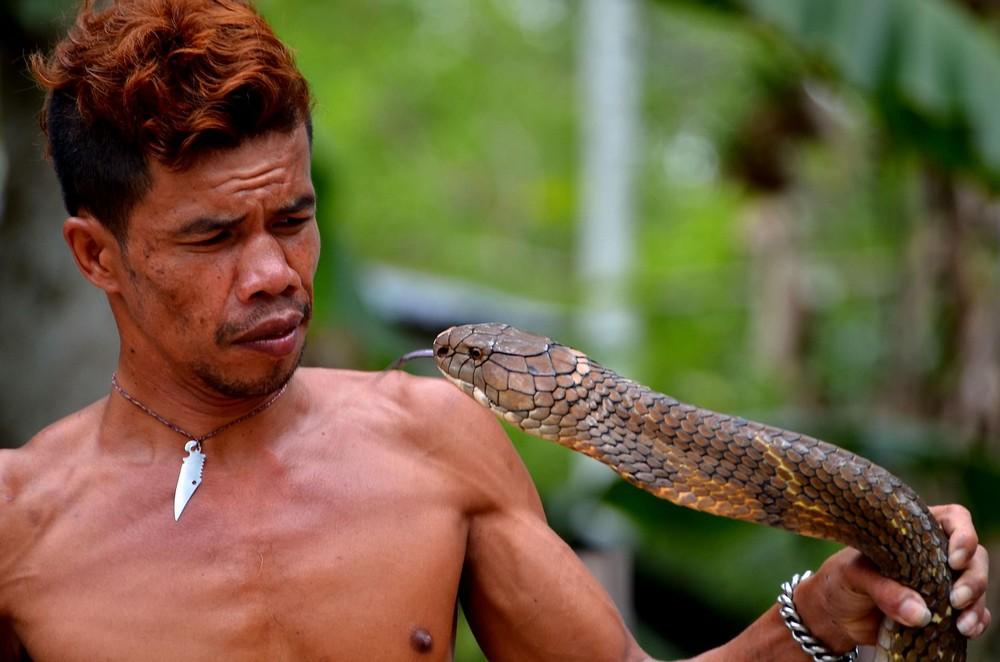 фильм ловим змей