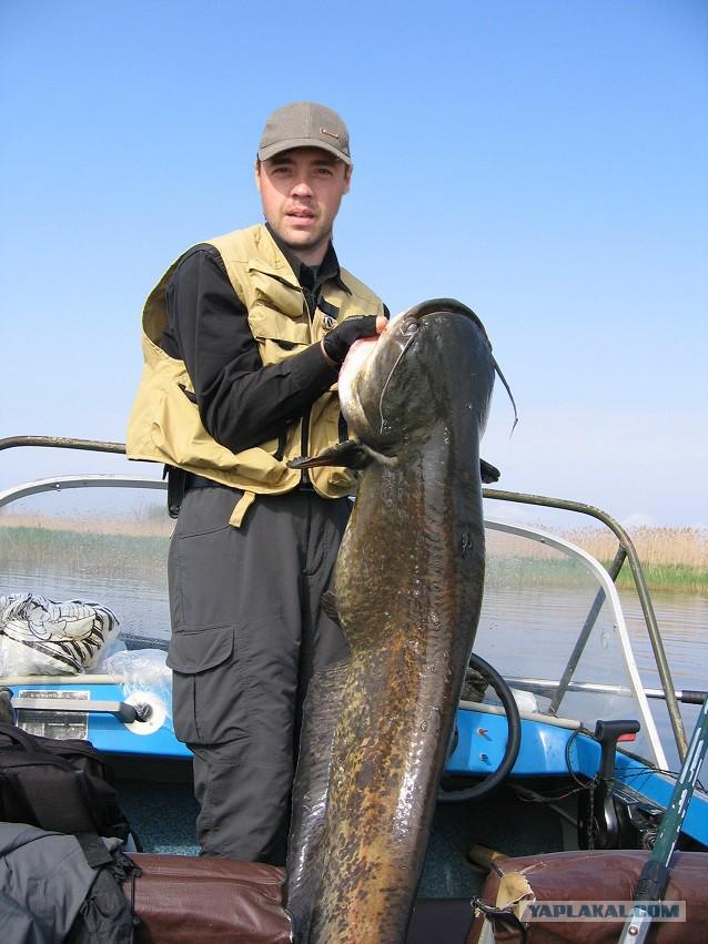 удачливый рыбак фото