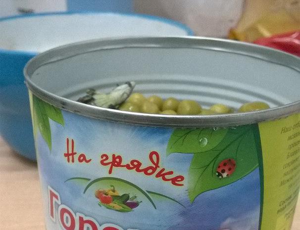 Тагильчанин обнаружил в банке с зеленым горошком ящерицу