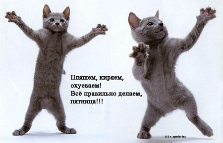 http://s00.yaplakal.com/pics/pics_original/7/7/3/726377.jpg