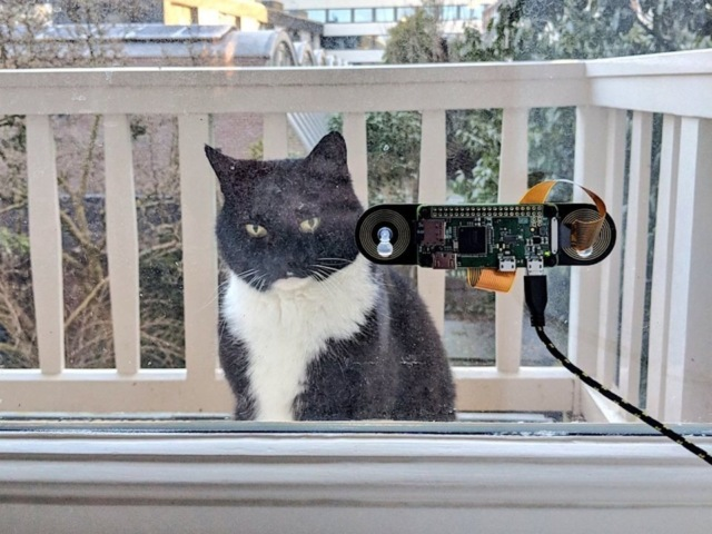 Как запускать кота с улицы домой, если ты программист
