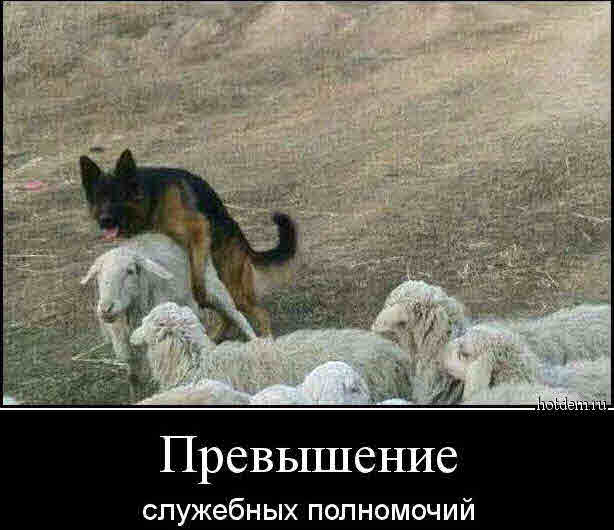 http://s00.yaplakal.com/pics/pics_original/7/8/0/13096087.jpg