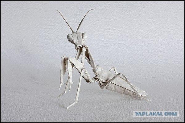 Оригами за 1,5 тысячи фунтов