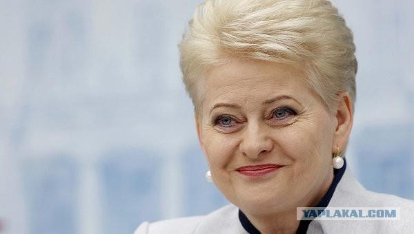 СМИ: президент Литвы не поедет в РФ