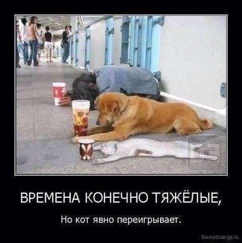http://s00.yaplakal.com/pics/pics_original/7/9/3/4929397.jpg