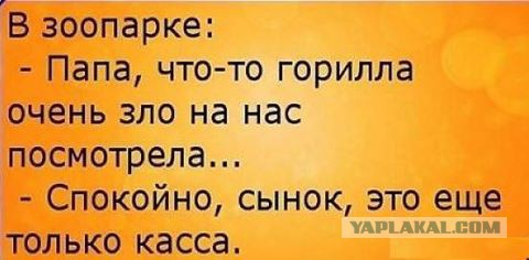 http://s00.yaplakal.com/pics/pics_original/7/9/5/8658597.jpg