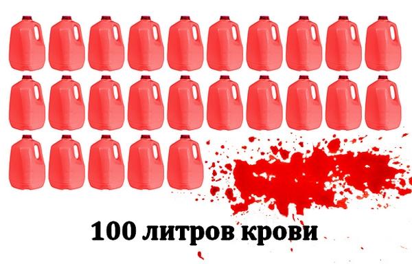 10 самых кровавых фильмов