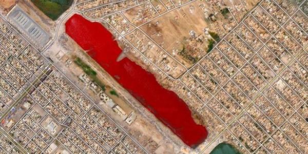 10 довольно таки шокирующих сцен, которые можно увидеть на Картах Google