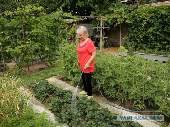В ГосДуме призвали россиян спасаться от кризиса за счет огородов