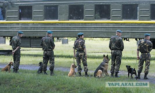 Не пускать на работу в РФ Укро-вахтеров.