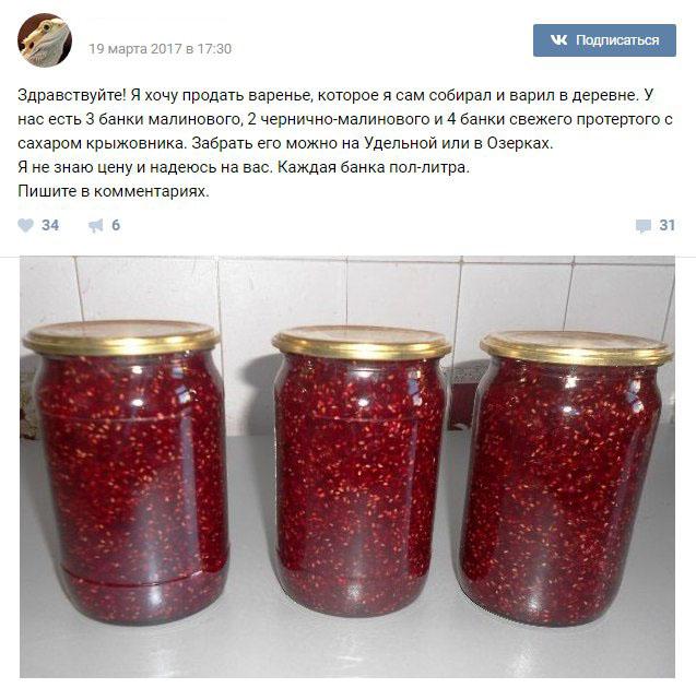 Мальчик из Санкт-Петербурга продал варенье, чтобы купить ящерицу