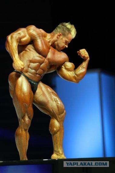 Таким образом при приеме стероидов наблюдается общая неблагоприятная ситуация: высокий уровень холестерина...