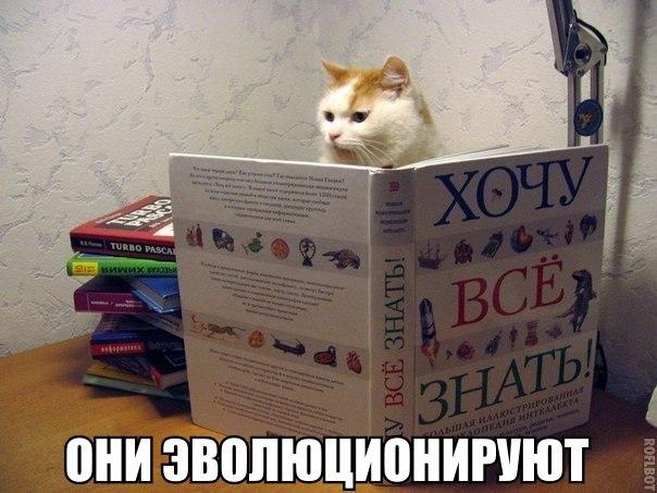 http://s00.yaplakal.com/pics/pics_original/8/2/0/9650028.jpg