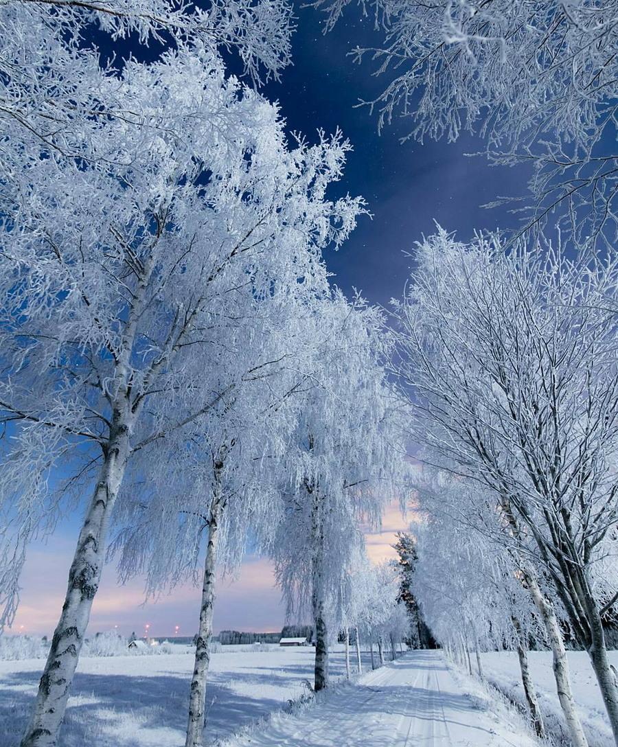 Просто красивые фото - Страница 4 10742528