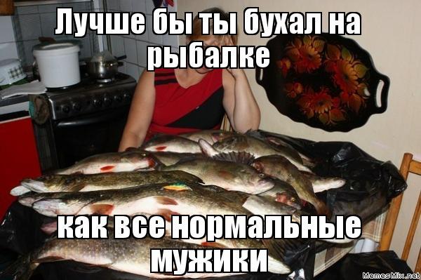 а я думал ты рыбу ловишь