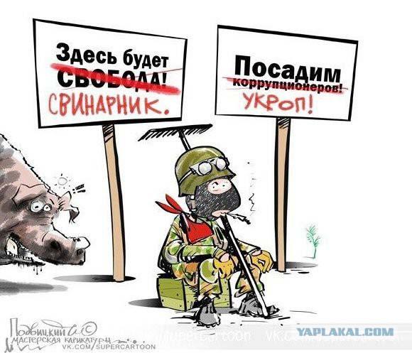 ОБСЕ намерена расширить наблюдательную миссию на Востоке Украины - Цензор.НЕТ 1959