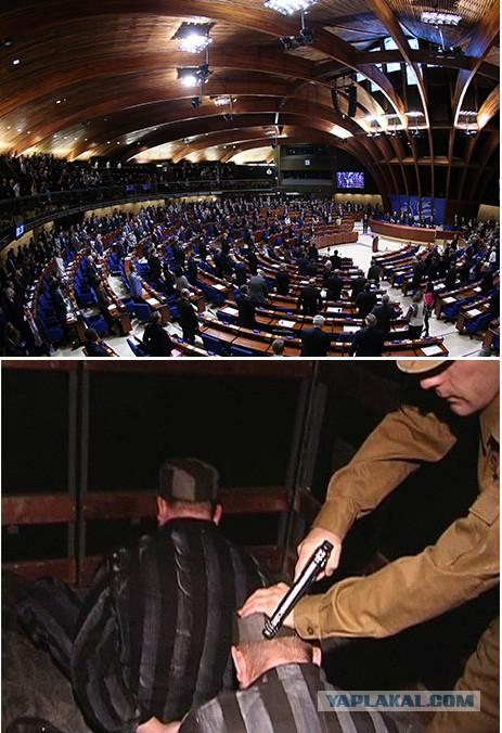 В РФ может вернуться смертная казнь