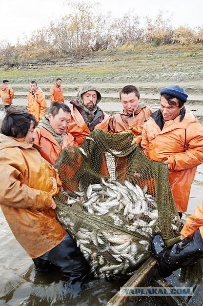 день рыбака в решетихи