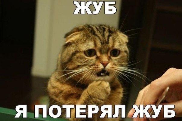 http://s00.yaplakal.com/pics/pics_original/8/5/5/10549558.jpg
