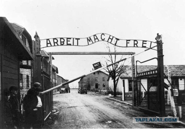 the horrifying experiences in the german concentration camps of auschwitz and buchenwald 10 of the worst nazi concentration camps the 10 worst nazi concentration camps of wwii 1 auschwitz-birkenau buchenwald was a forced labor camp.