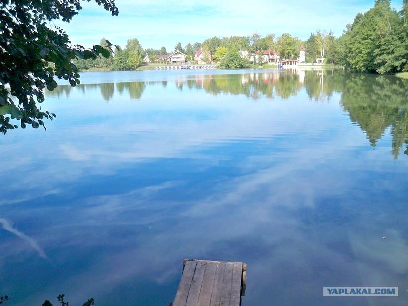 набирает большую места для купания в ленинградской области зарегистрирована