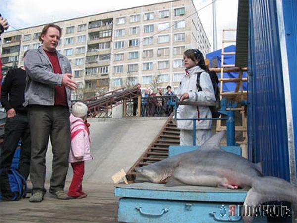самый большой магазин рыбалка в санкт-петербурге