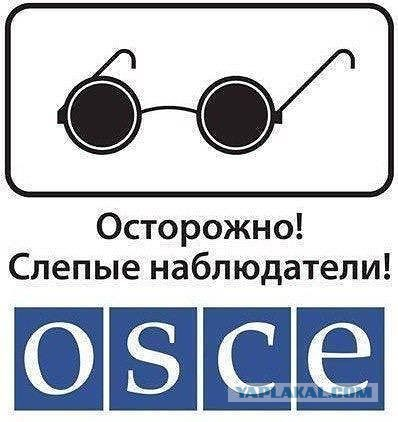 ОБСЕ: Сейчас на Донбассе работают 588 наблюдателей - Цензор.НЕТ 3676